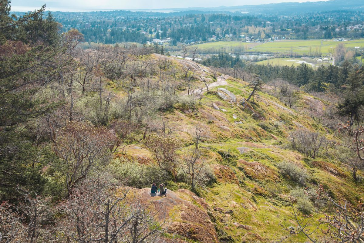 hikers sitting on a rock in a Garry oak ecosystem, looking over developed land