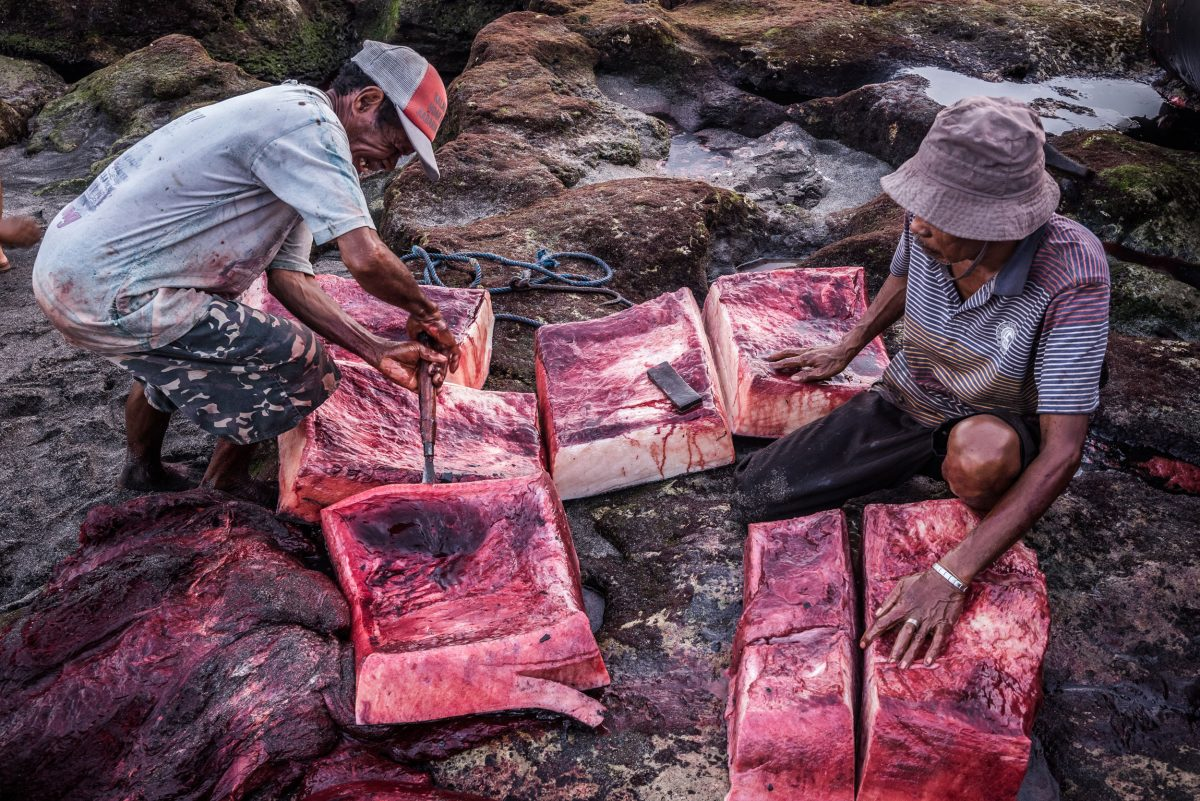 villagers butchering a sperm whale