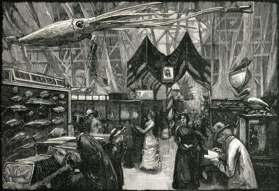 Illustration of the International Fisheries Exhibition of 1883