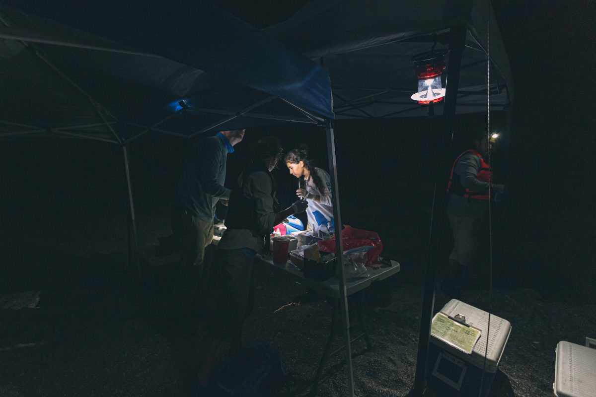 The team looks for supplies in the dark at the makeshift ER on Isla Partida.