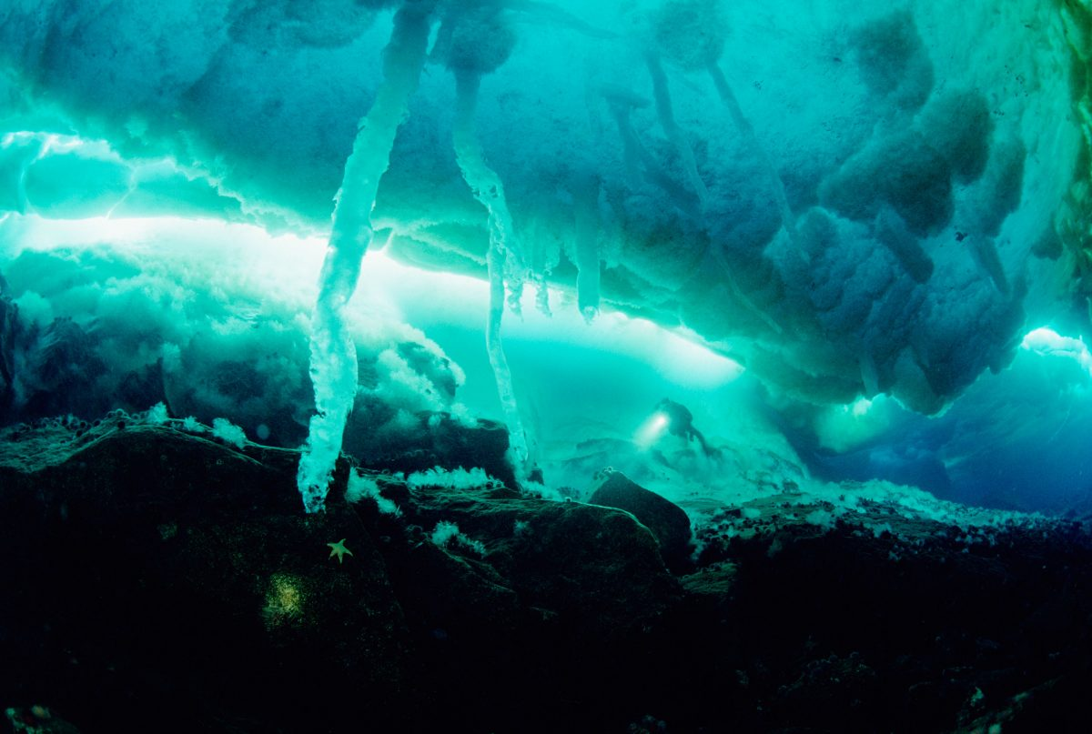 Scuba diver exploring sea ice stalactites or brine channels, Antarctica