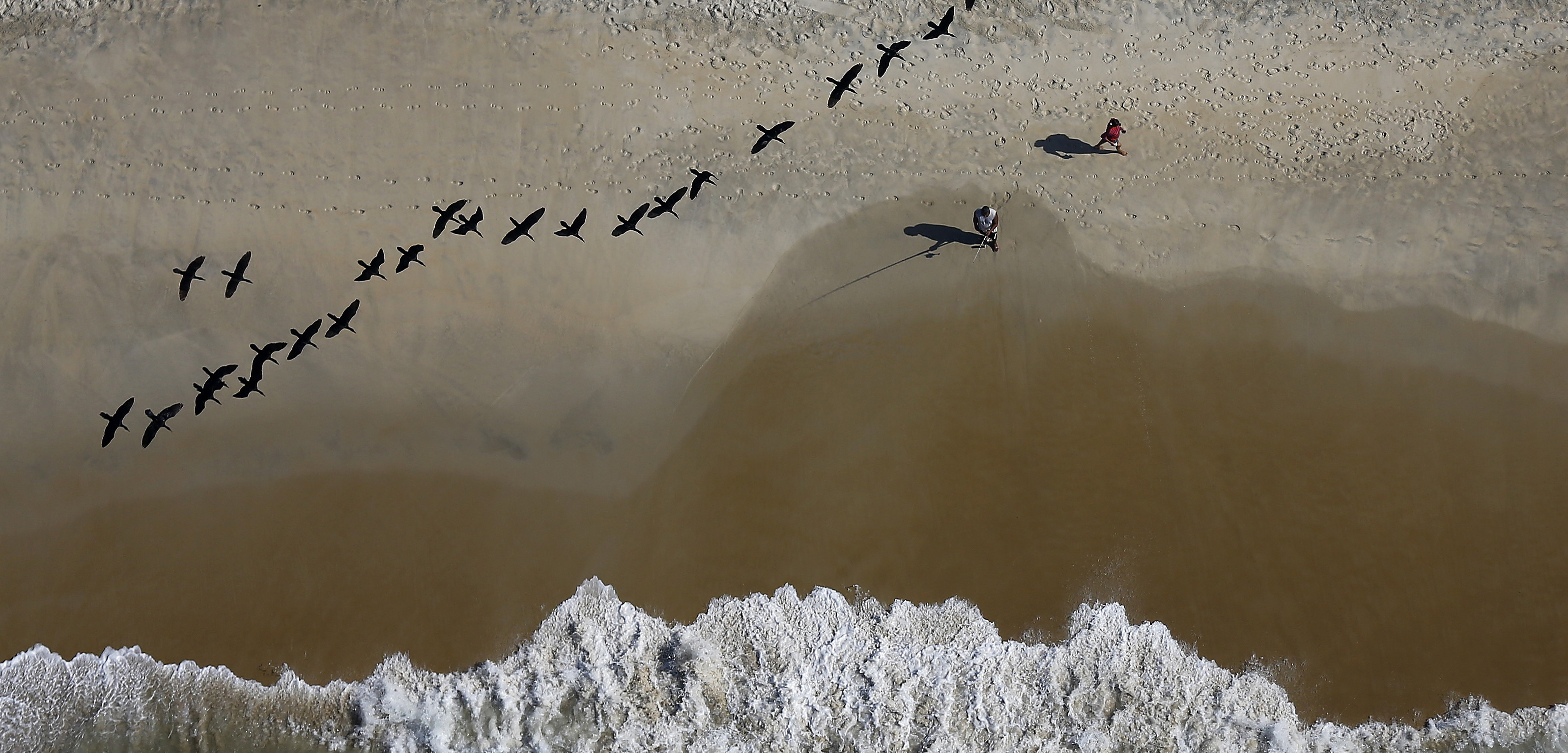 Birds fly overhead as fishers cast from the beach near Rio de Janeiro, Brazil. Photo by Ricardo Moraes/Reuters/Corbis