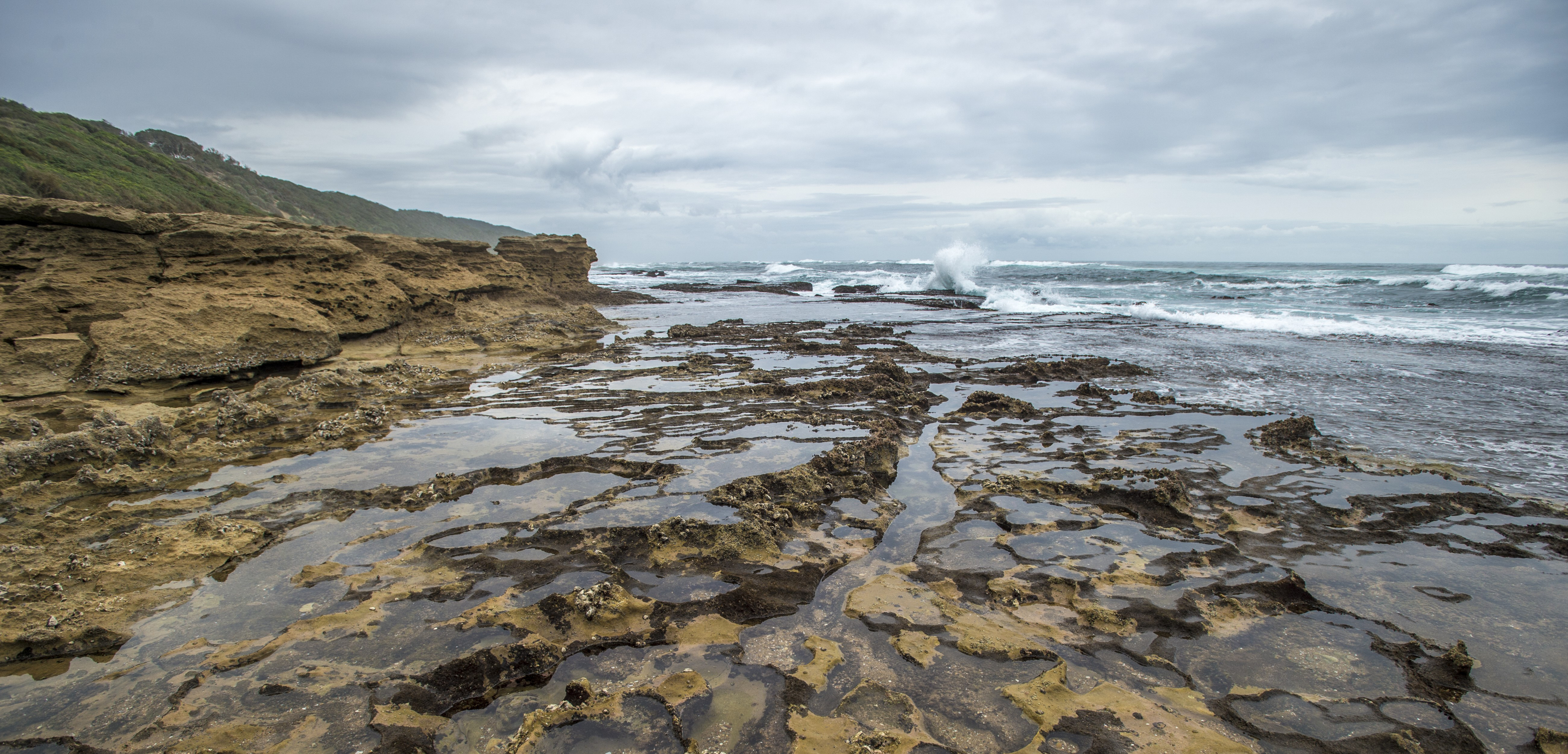 Tide pools, being relatively isolated, are ideal for experimental manipulation. Photo by Edwin Remsberg/Corbis