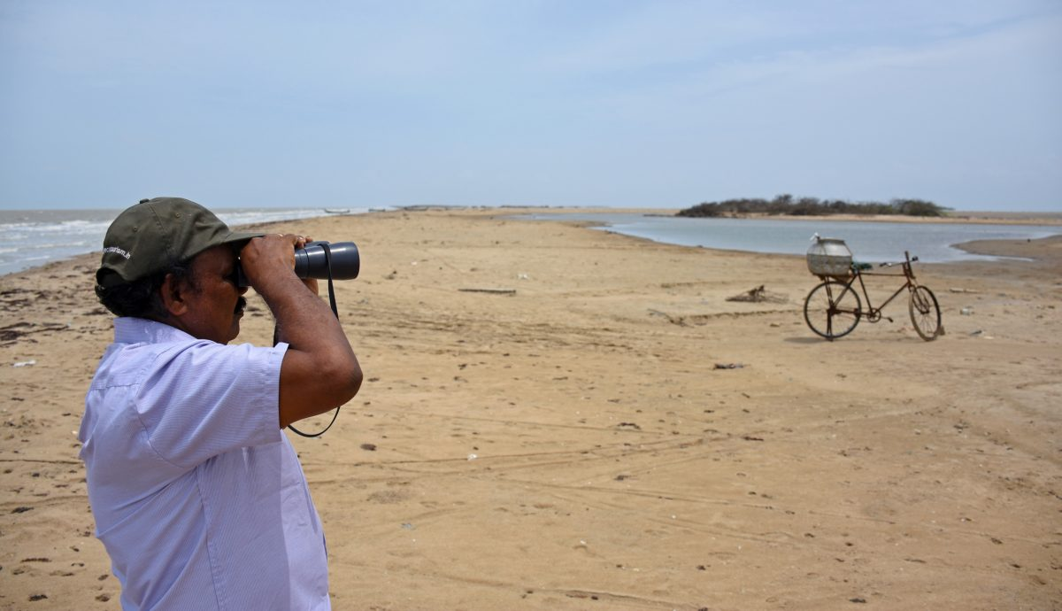 Sivananinthaperumal Balachandran at Point Calimere, Tamil Nādu, India