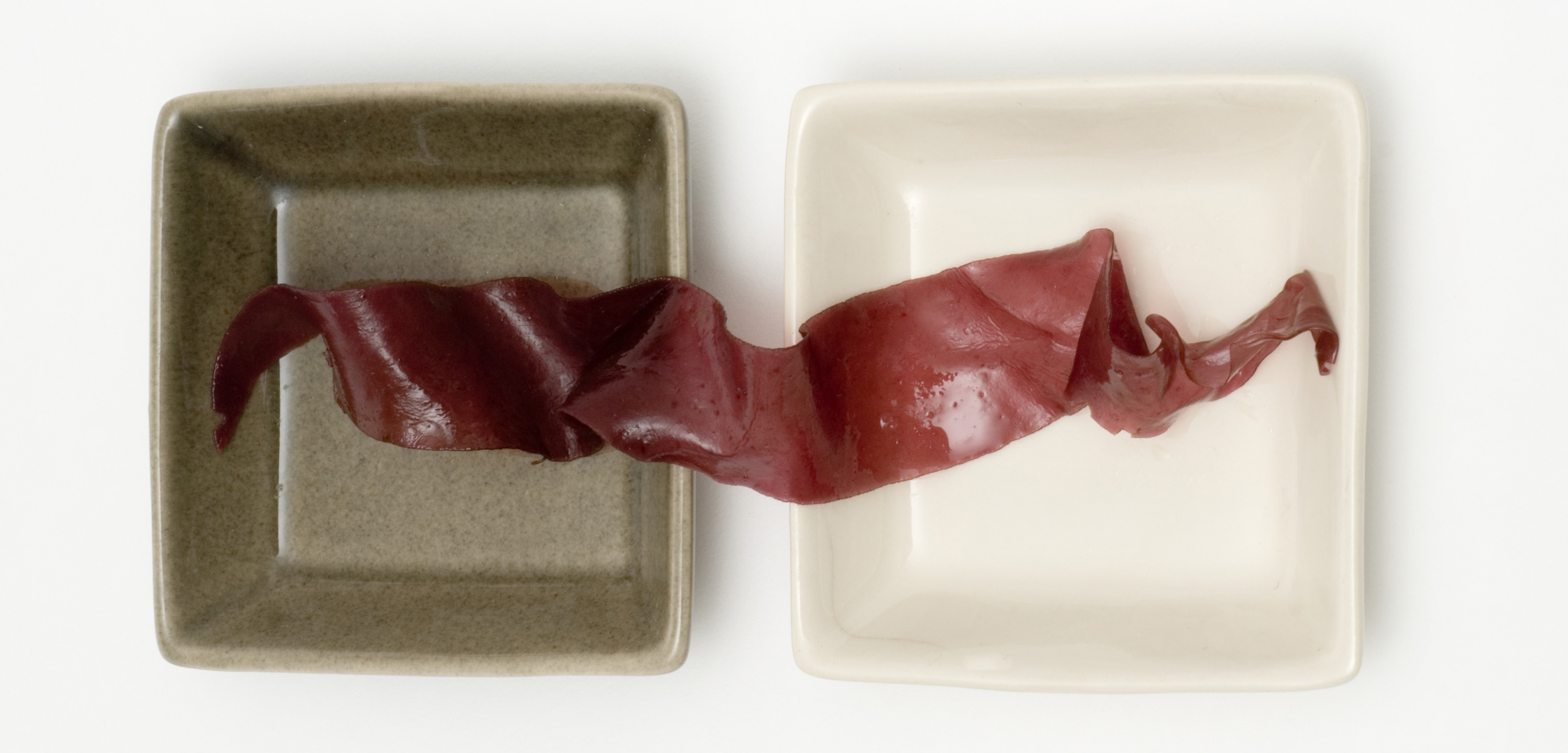 Dulse seaweed even kind of looks like bacon. Photo by Michele Constantini/ZenShui/Corbis