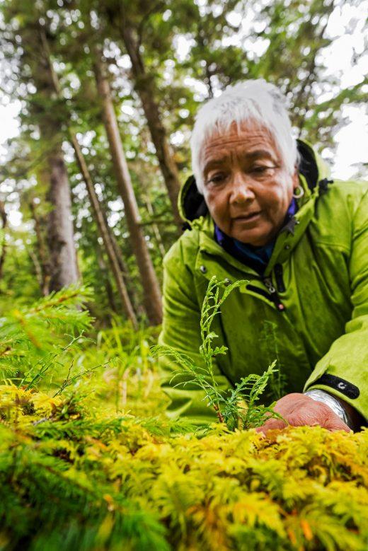 Cultural plant expert Barb Wilson