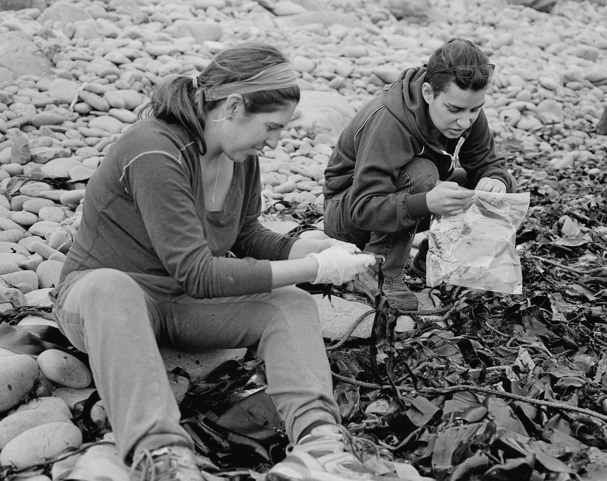 Max Liboiron and France Liboiron collect samples on a beach