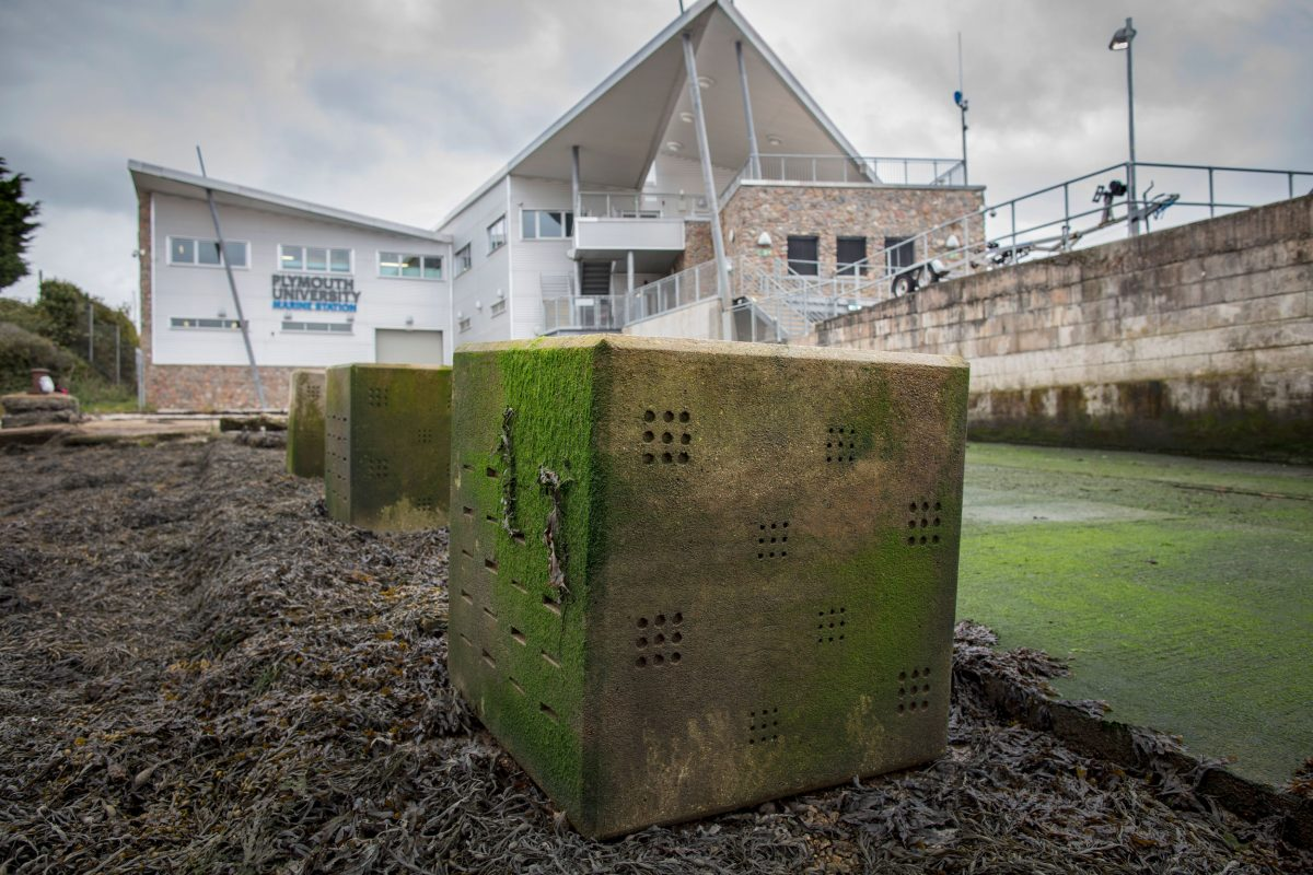 Bioblock outside Plymouth University Marine Station