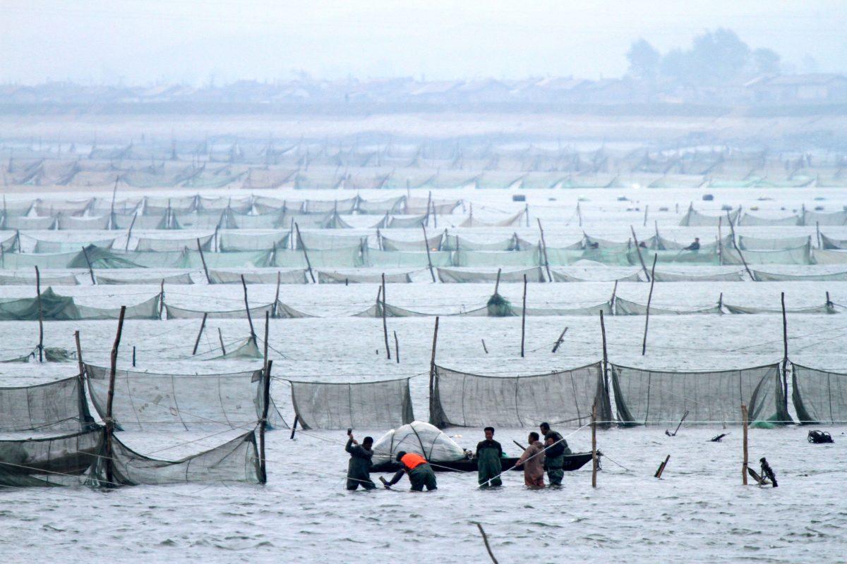 North Koreans fishing near Chinese border