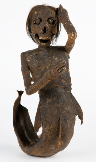 Japanese mermaids were often known as monkey fish. Investigation into the mermaid at the Buxton Museum in Buxton, England, revealed its true makeup—no monkey, just a fish and a lot of craft supplies. The position of her hands suggests she was once holding a comb and a mirror. Photo courtesy of Buxton Museum and Art Gallery, Derbyshire County Council