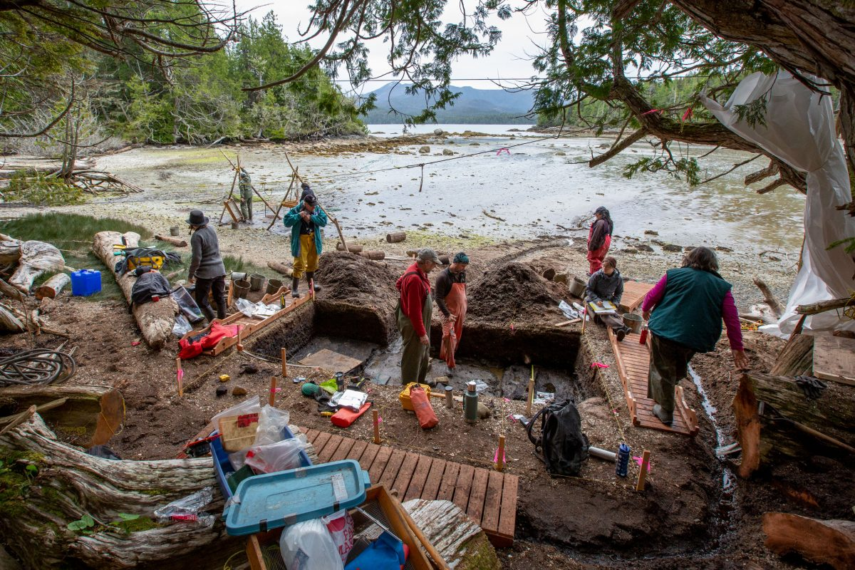 The archaeology team on Calvert Island, British Columbia, helps uncover ancient footprints at site near the Hakai Institute. Coasts, with their soft sediment where tracks are easily made, are likely places to find ancient footprints. Photo by Grant Callegari