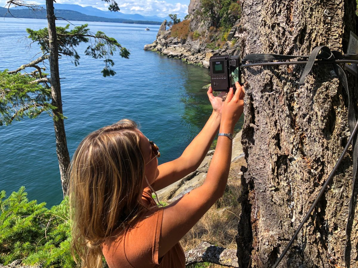 Madeleine Ankenman, biological technician with the Galiano Conservancy Associa-tion, checks a wildlife camera monitoring fishing activity within a rockfish conserva-tion area near Galiano Island, British Columbia