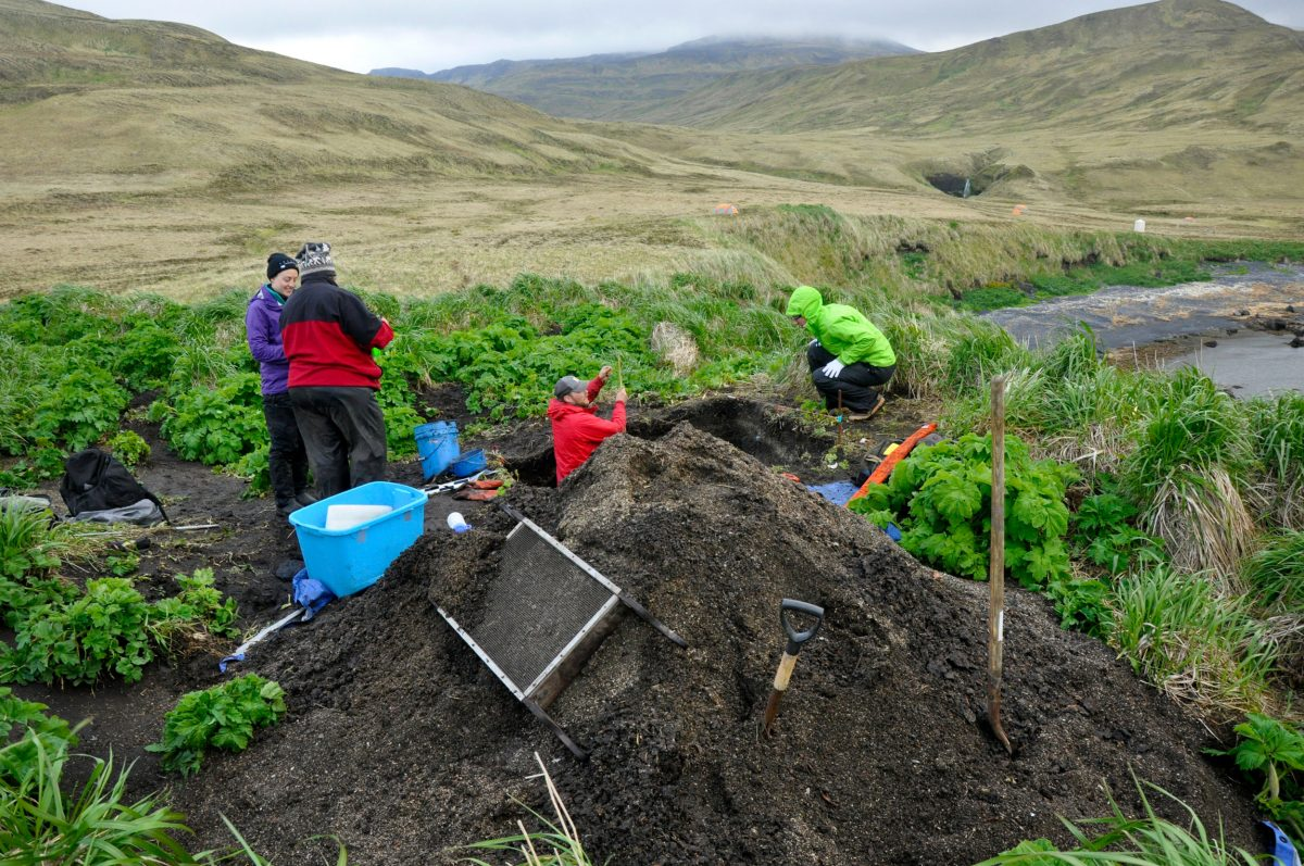 archaeological dig in the Aleutian Islands