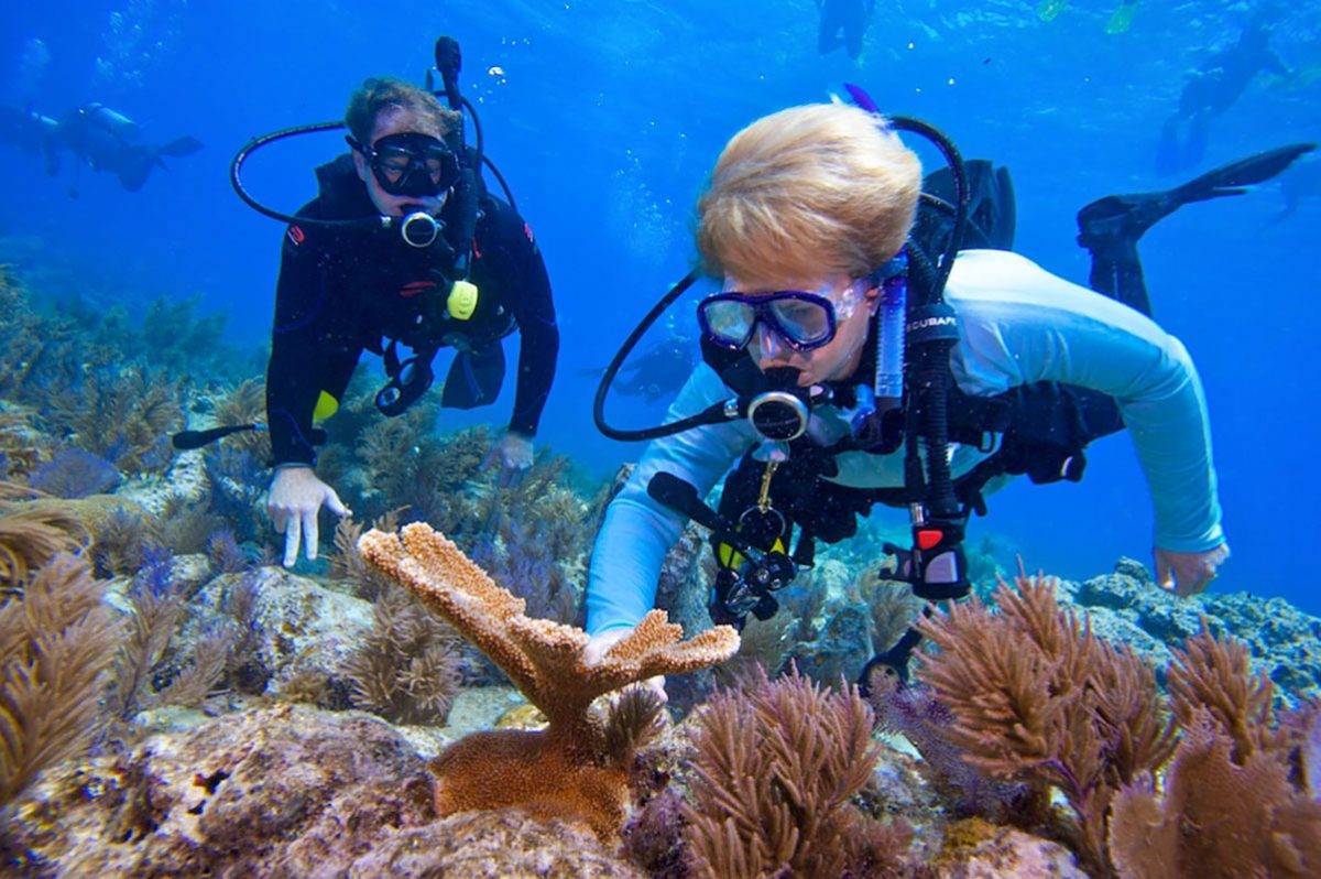 Jane Lubchenco SCUBA diving