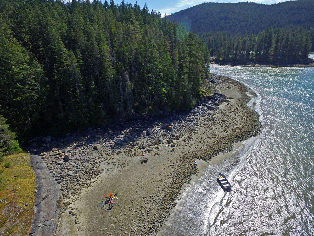 aerial photo of clam garden on Quadra Island, BC