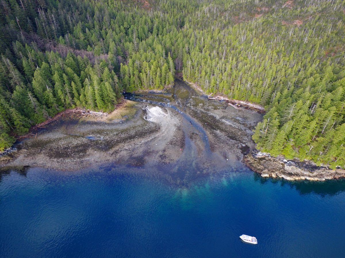 drone photo Grenville Channel, British Columbia
