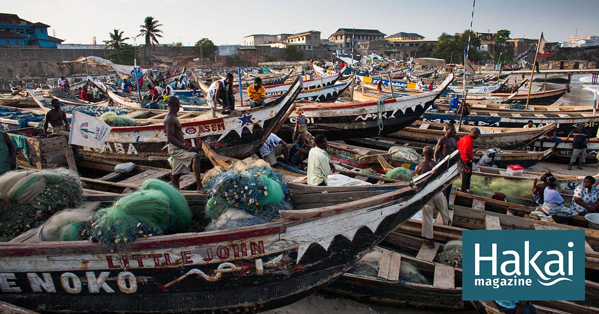 The Shady Practices That Plague Global Fishing   Hakai Magazine