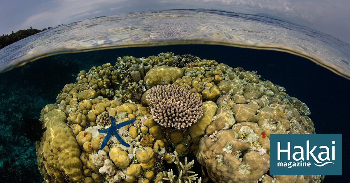 When It Comes to Climate Change, the Ocean Never Forgets