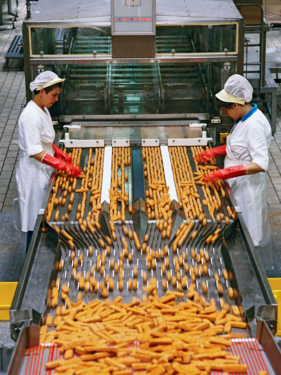 Two women work on a production line making frozen fish fingers