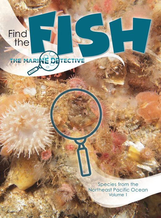 Cover for Find the Fish