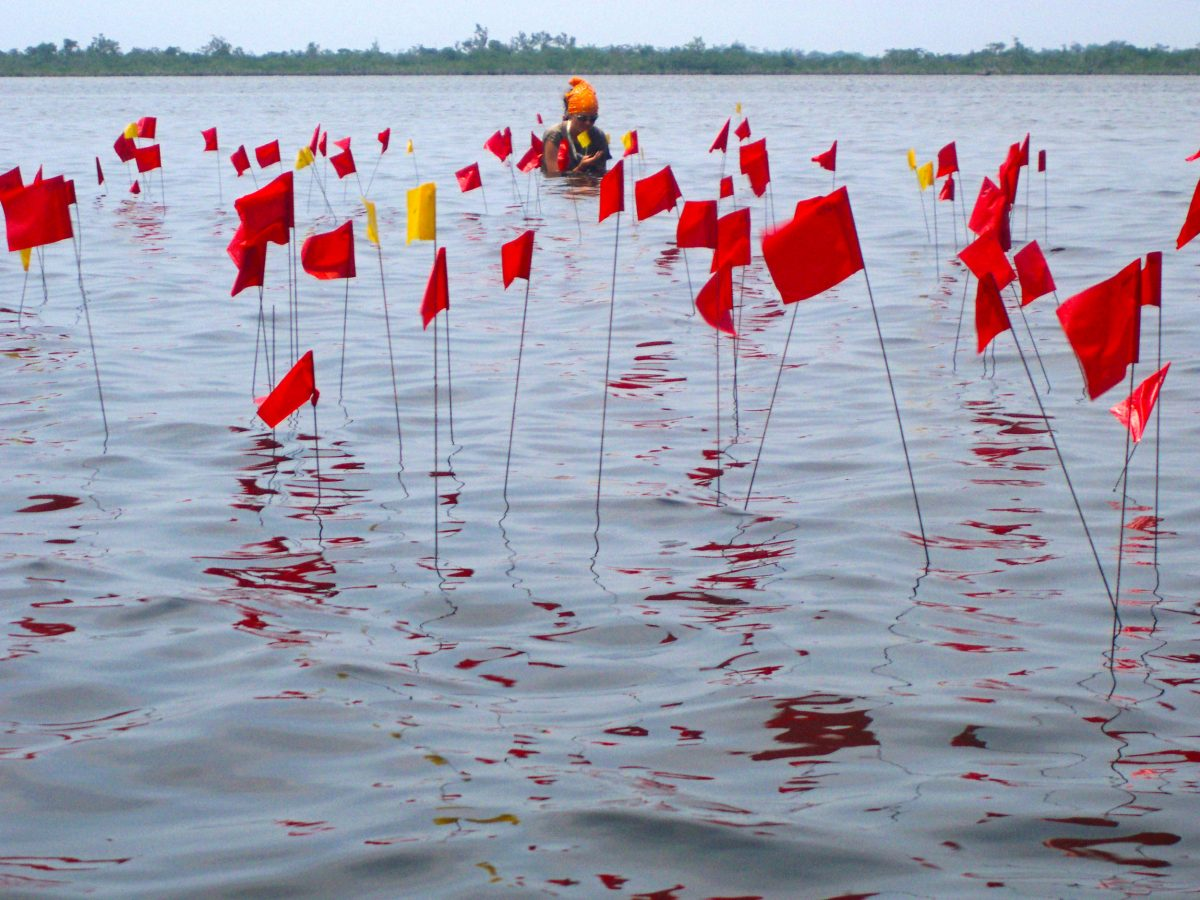red flags marking the location of submerged building poles at a Maya archaeology site