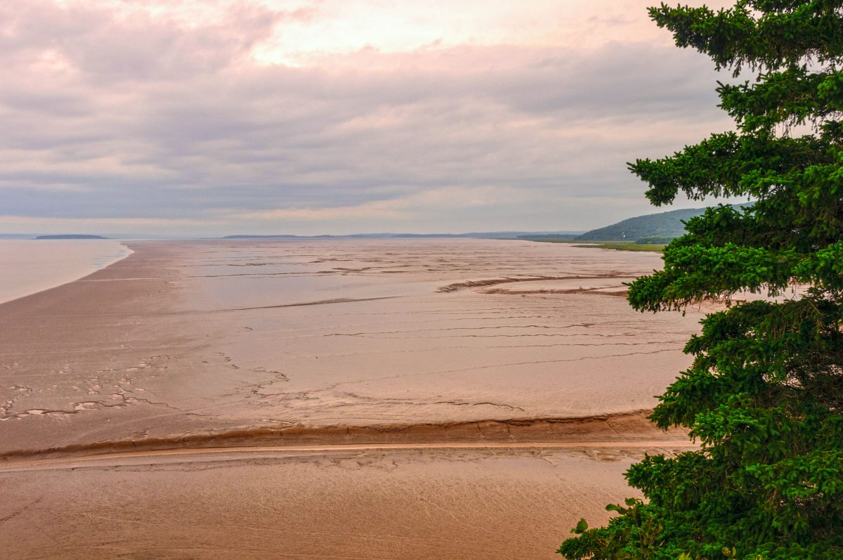 mudflats, Bay of Fundy