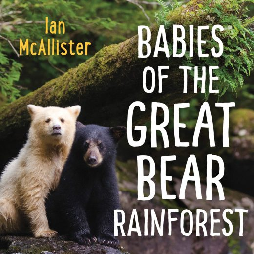 Babies of the Great Bear Rainforest cover image