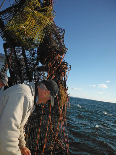 Reid Brown pulls up ghost gear from the ocean off Canada's east coast. Photo courtesy of the Fundy North Fishermen's Association