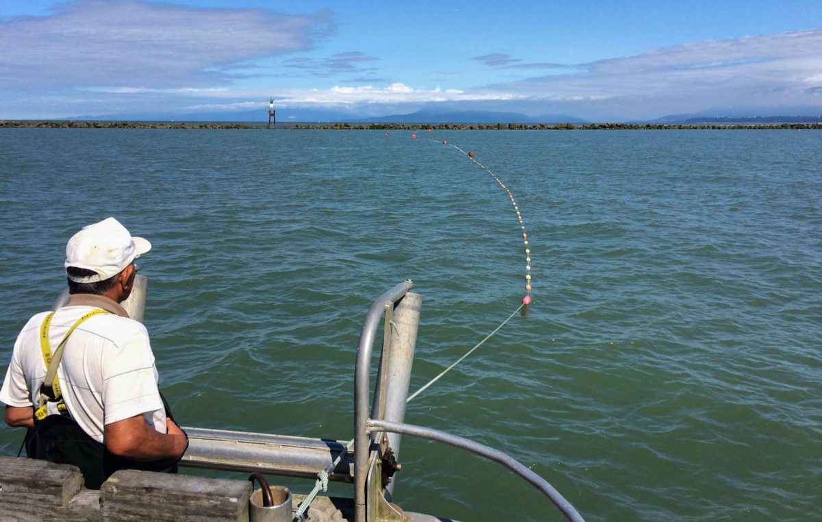 Satoshi gill netting off the stern of the Magic Maker. Photo courtesy of the Hamada family