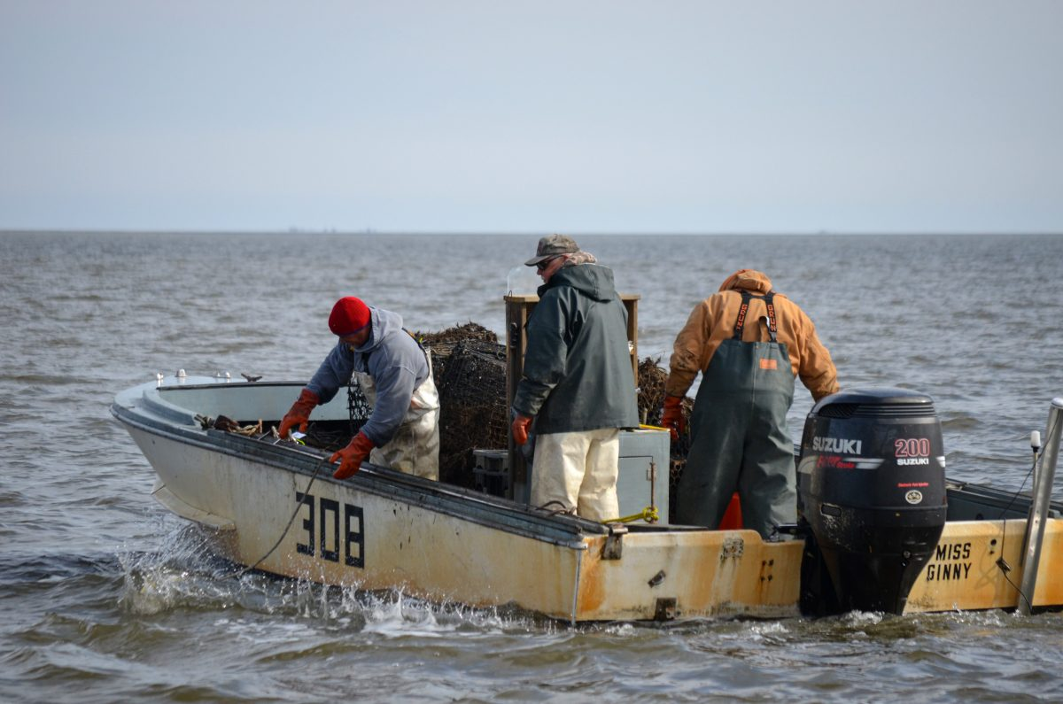 Fishers drop a grappling line into Mullica River–Great Bay Estuary, hoping to snag a lost trap