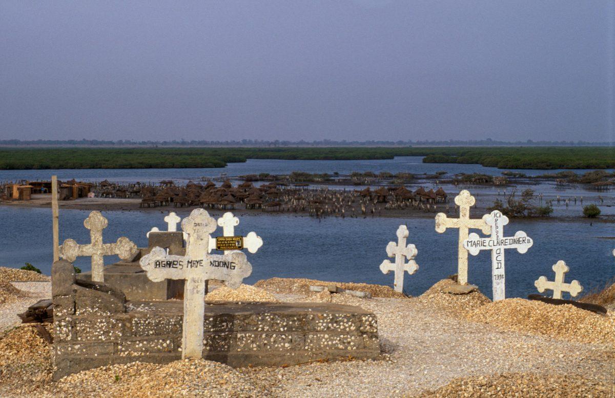 shell graves