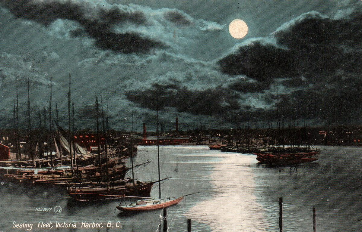 In the late 1800s, Victoria's Inner Harbour was home port to about 100 schooners involved in the commercial fur sealing industry.