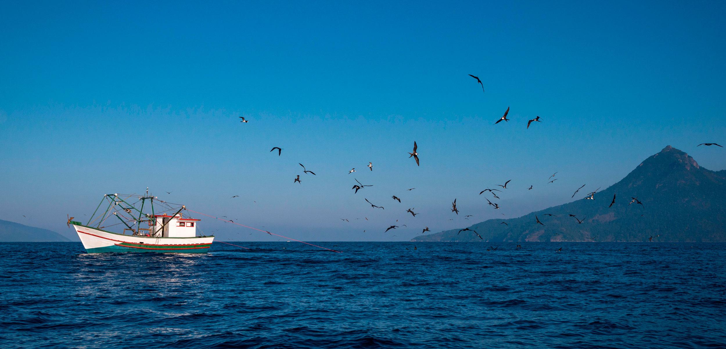 A fishing boat dragging a shrimp net in Brazil