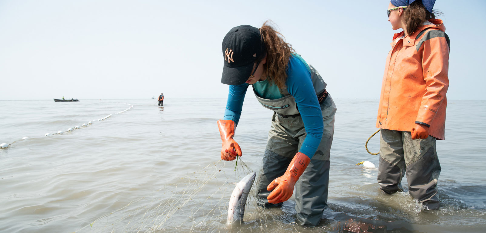 Sisters Melissa and Emily Taylor pick sockeye salmon from a setnet