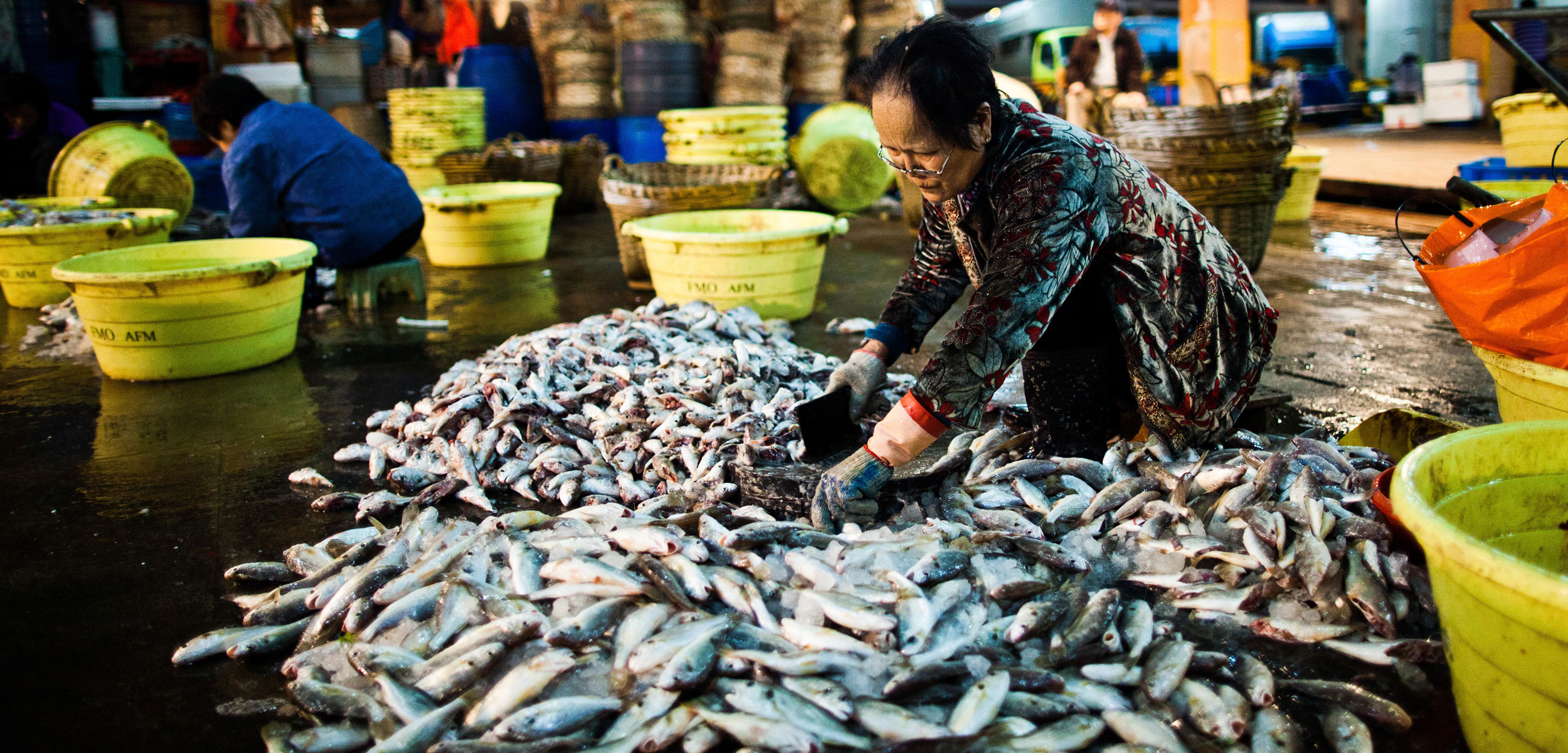 Woman sorting fish at Aberdeen Fish Market, Hong Kong, China