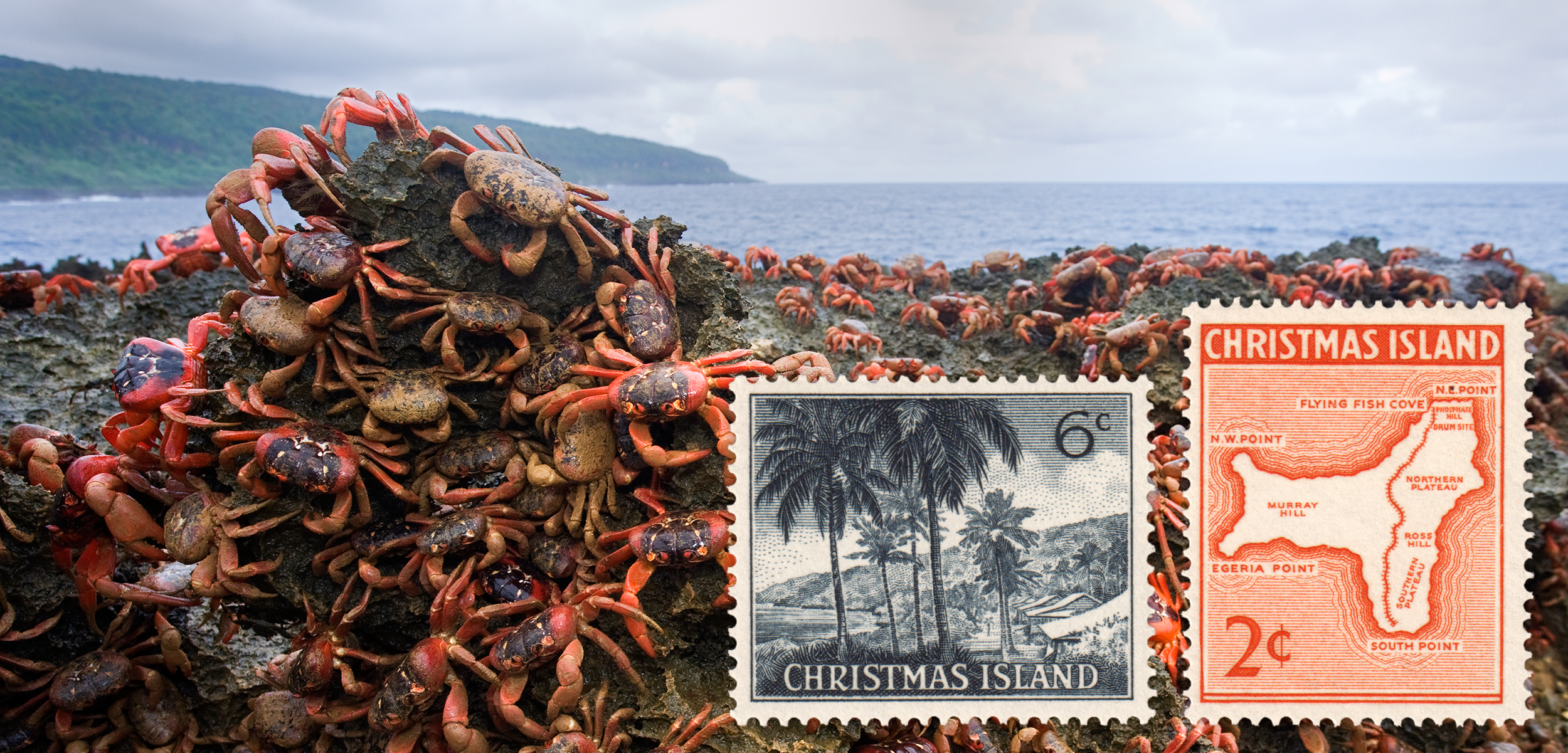 The biodiversity, unique culture, and colorful history of Australia's Christmas Island is reflected in postage stamps. Background photo by Stephen Belcher/Minden Pictures/Corbis