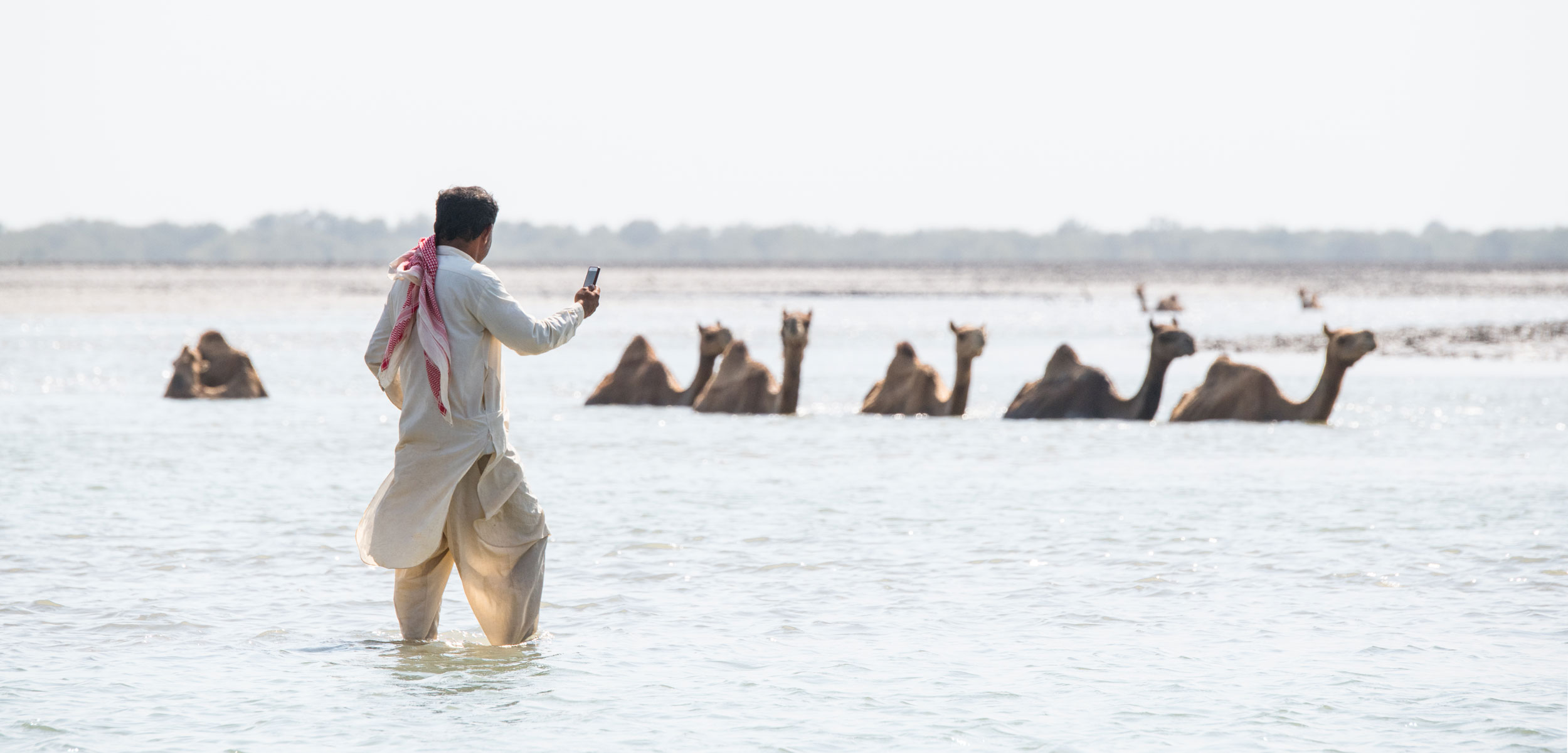 man with photo and kharai camels