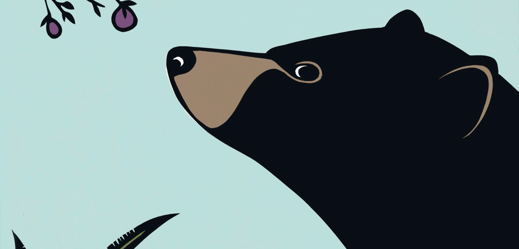 A detail of the cover illustration from B is for Bear: A Natural Alphabet by Hannah Viano. Image courtesy of Sasquatch Books