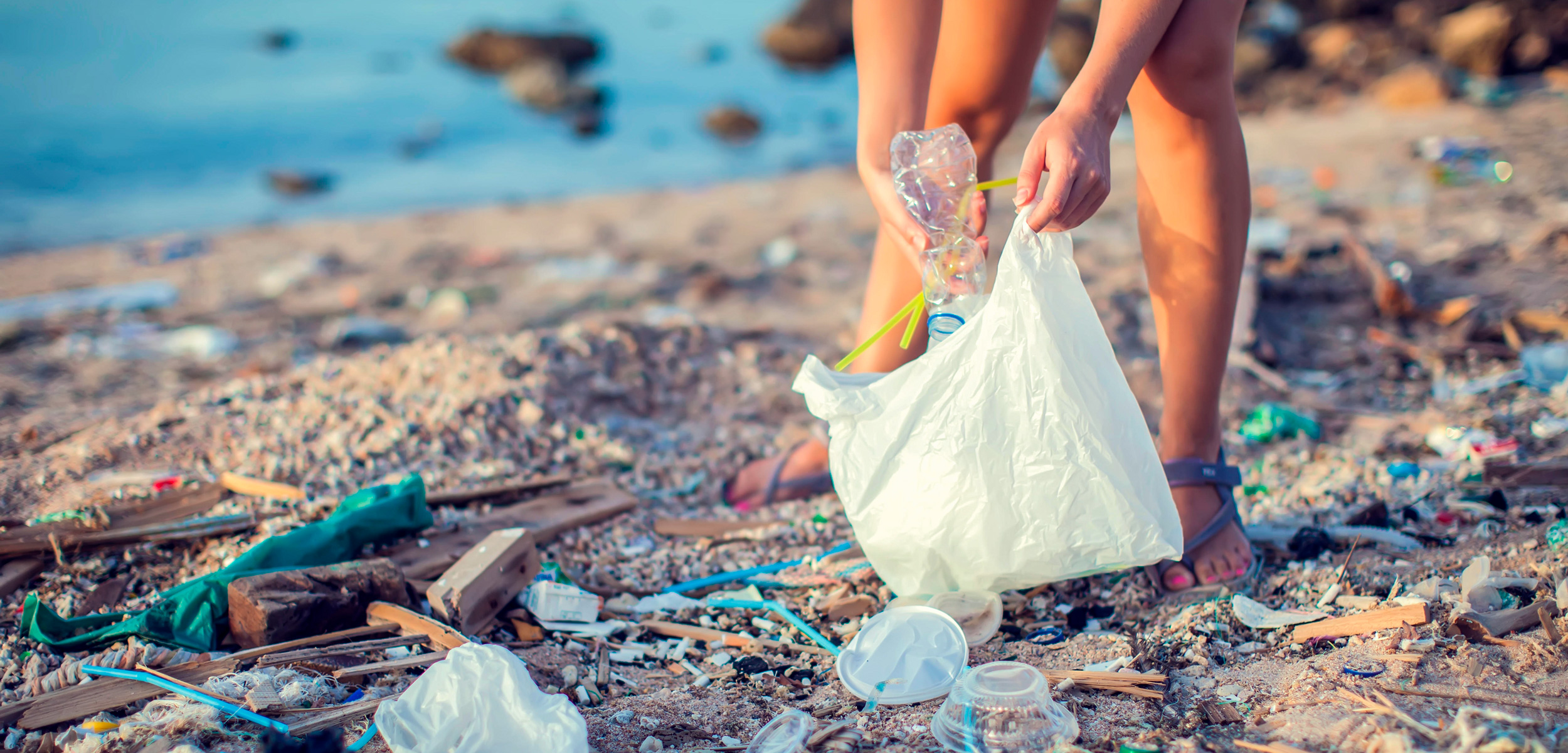 Woman collect garbage on the beach