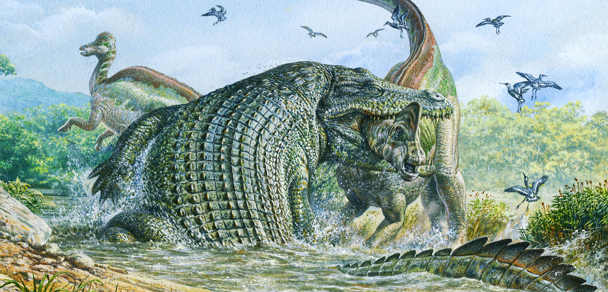 Deinosuchus reptile attacking a dinosaur