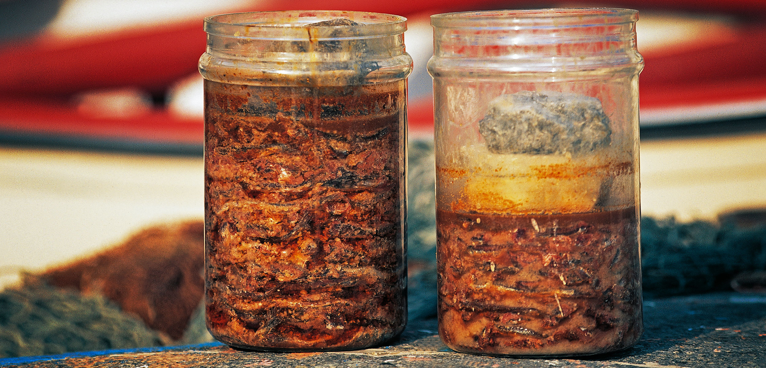 Jars of colatura di alici