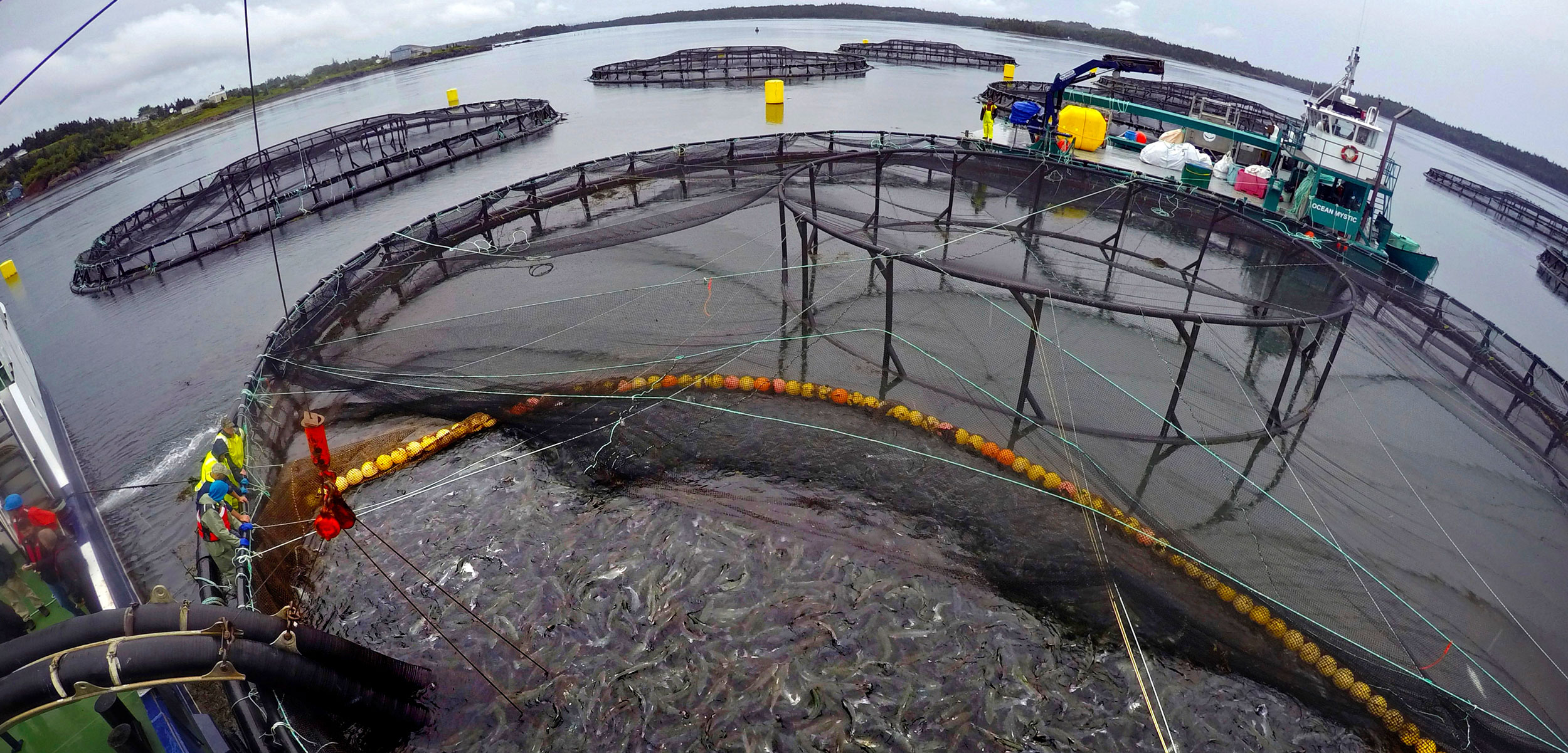 fish farm in Atlantic Canada