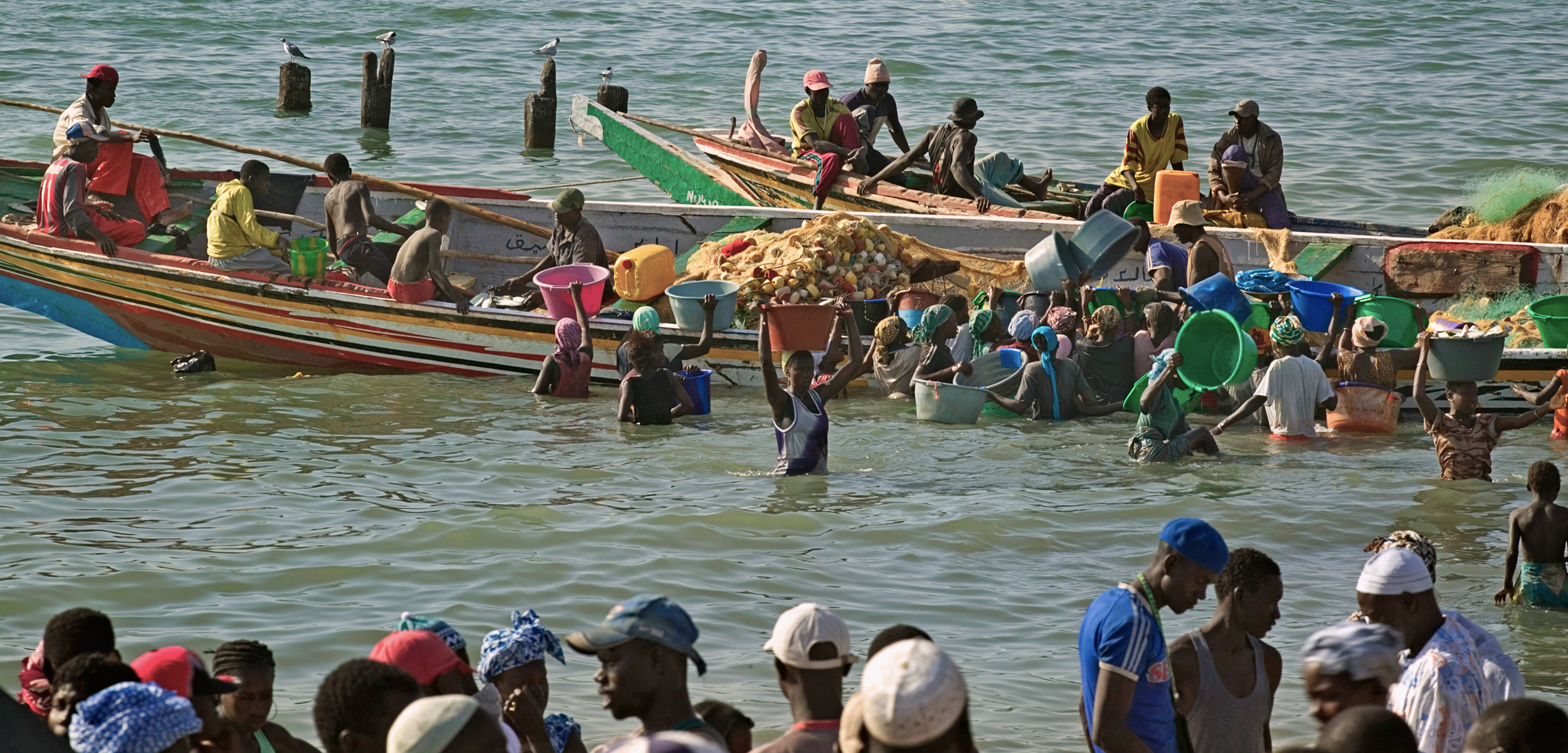 Gambian fishermen are hoping an eco-label will help secure their livelihood. Photo by Jon Hicks/Corbis