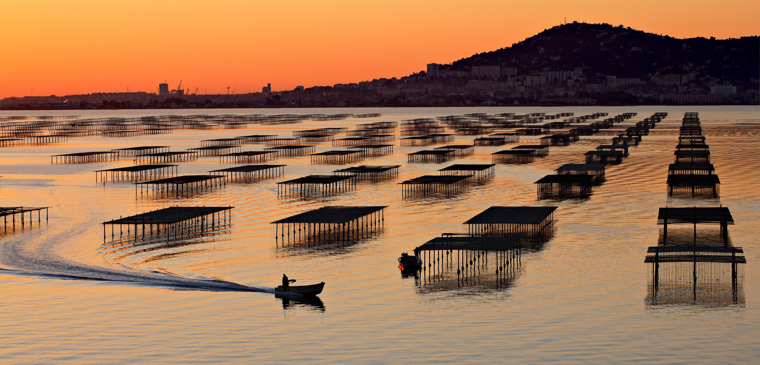Etang de Thau and oyster farming in Languedoc Roussillon, France