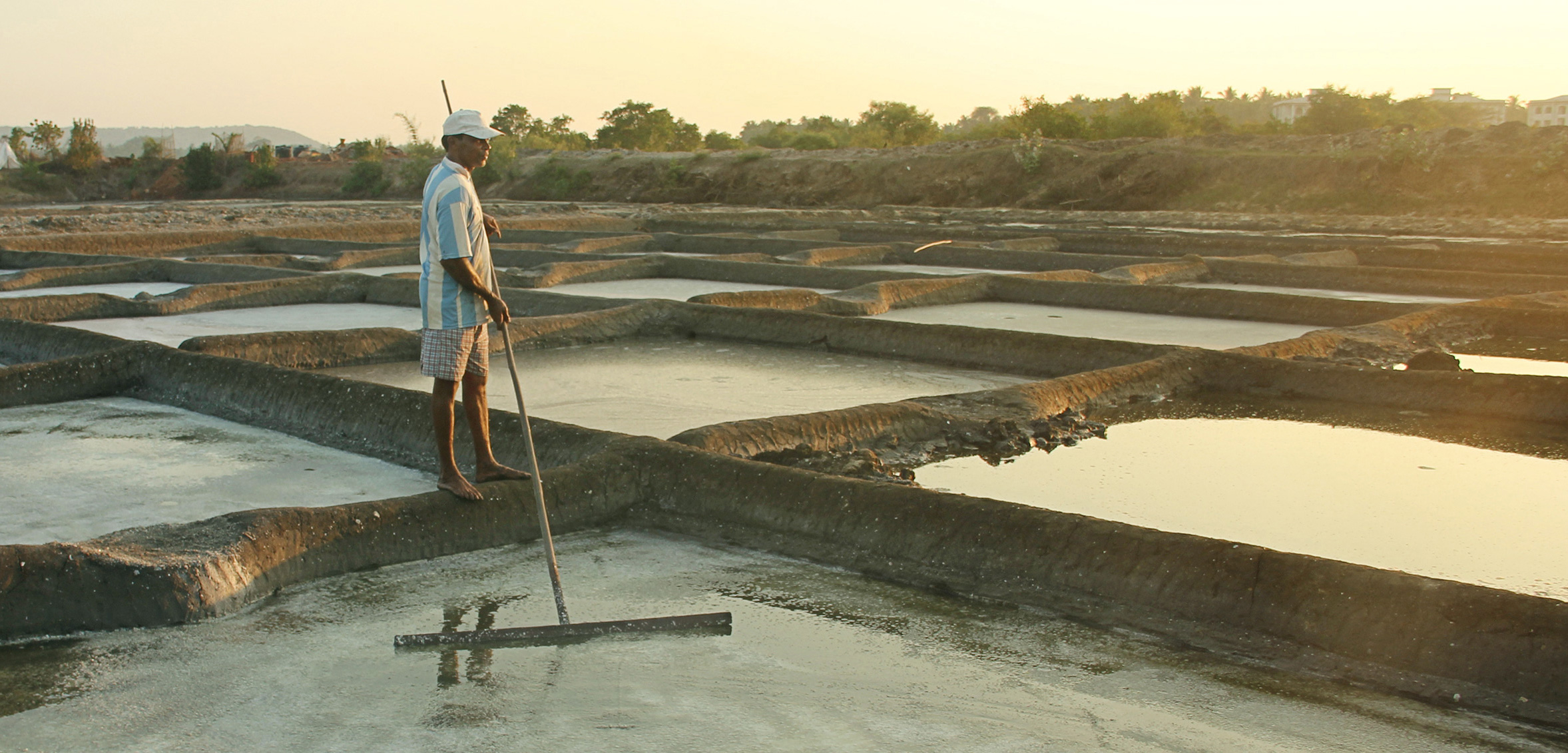 Pravin Bagli, one of the few remaining traditional salt makers in Goa, India, works on his salt pan near the Chapora River. Photo by Glenda D'Souza