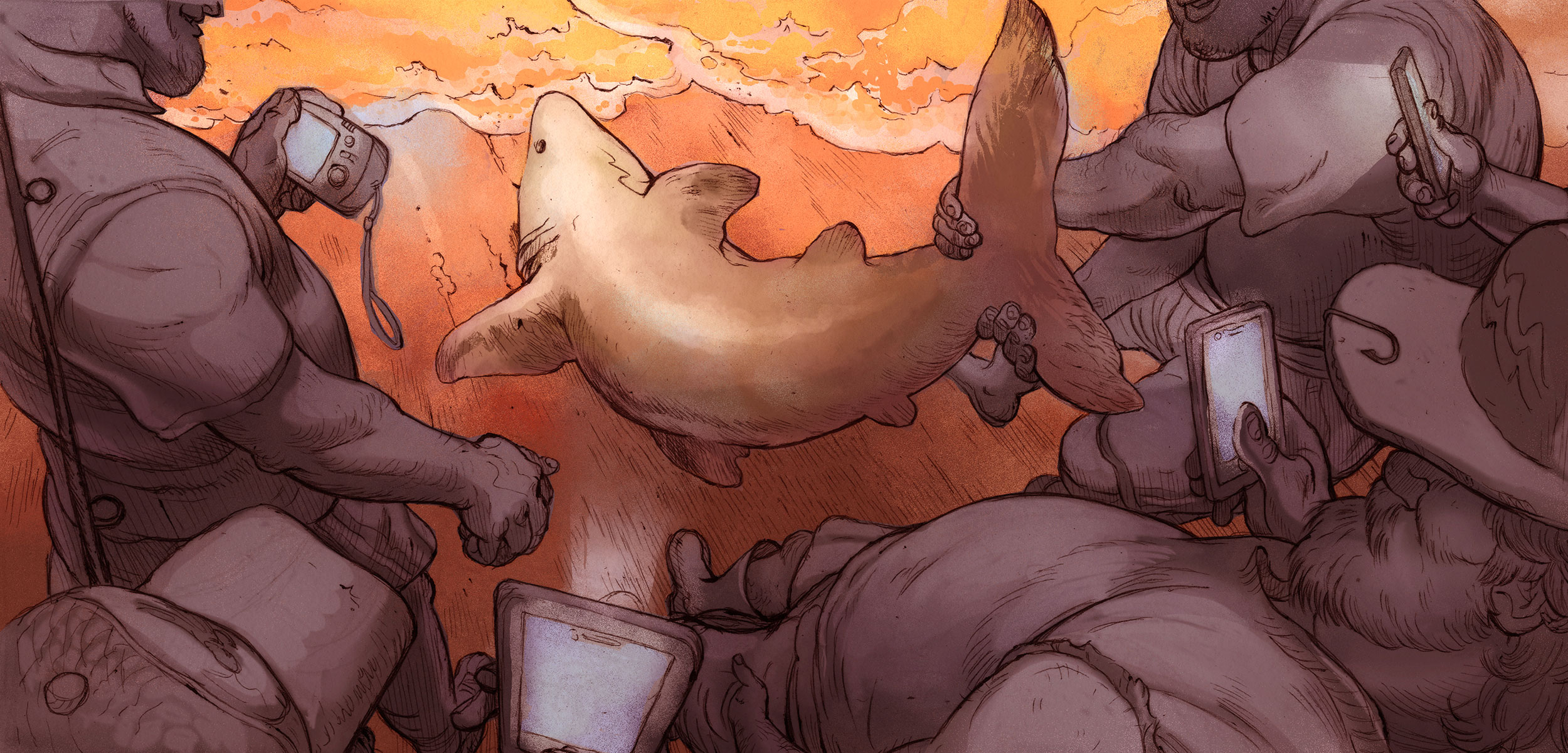 illustration of shark being pulled from water