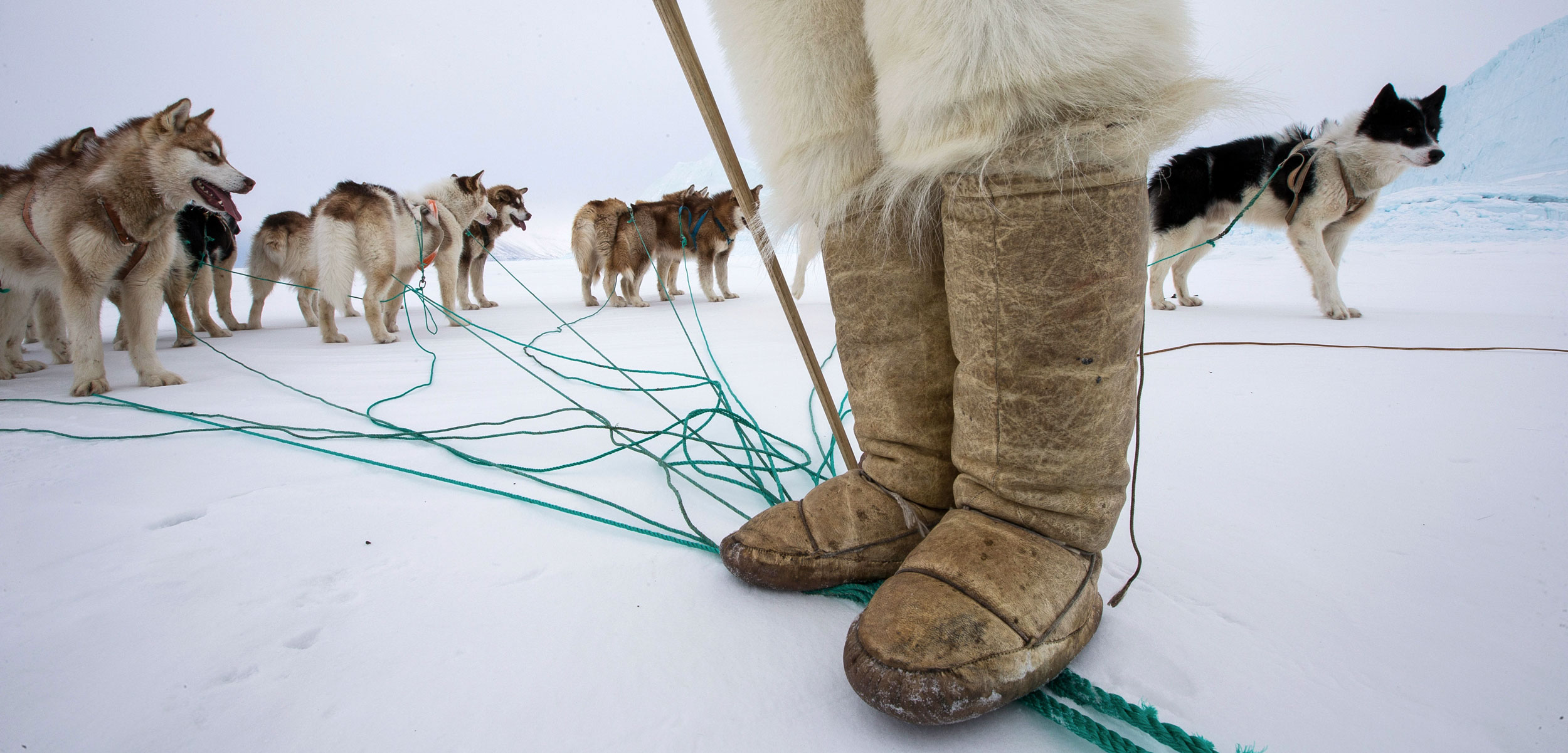 sled dogs and Inuit hunter's boots and polar bear skin pants, Greenland