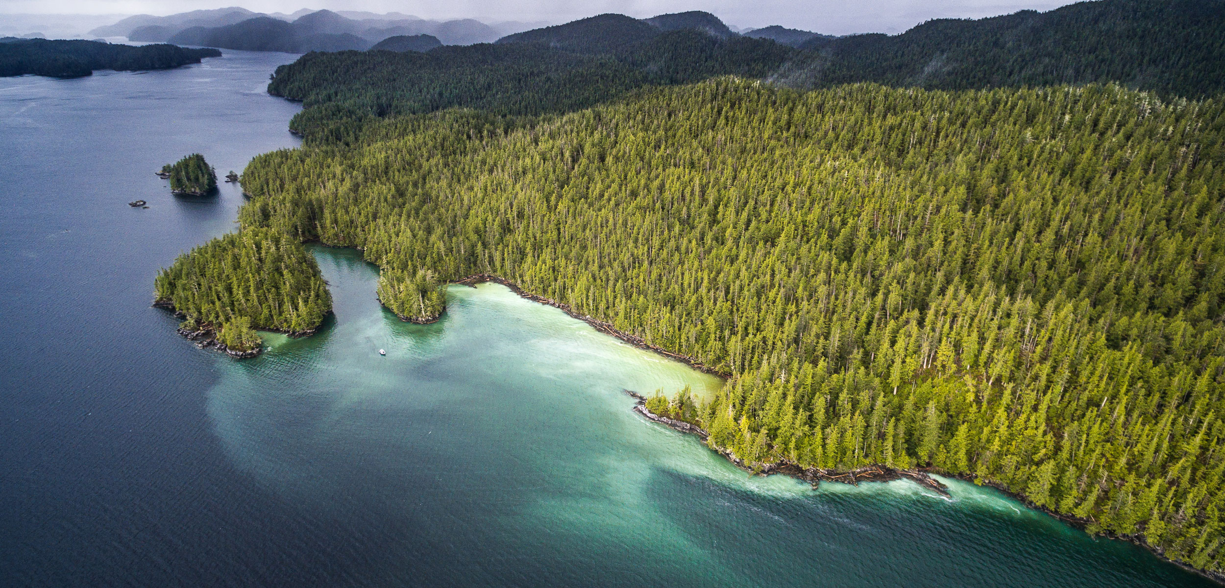 aerial shot of herring spawn on British Columbia coast