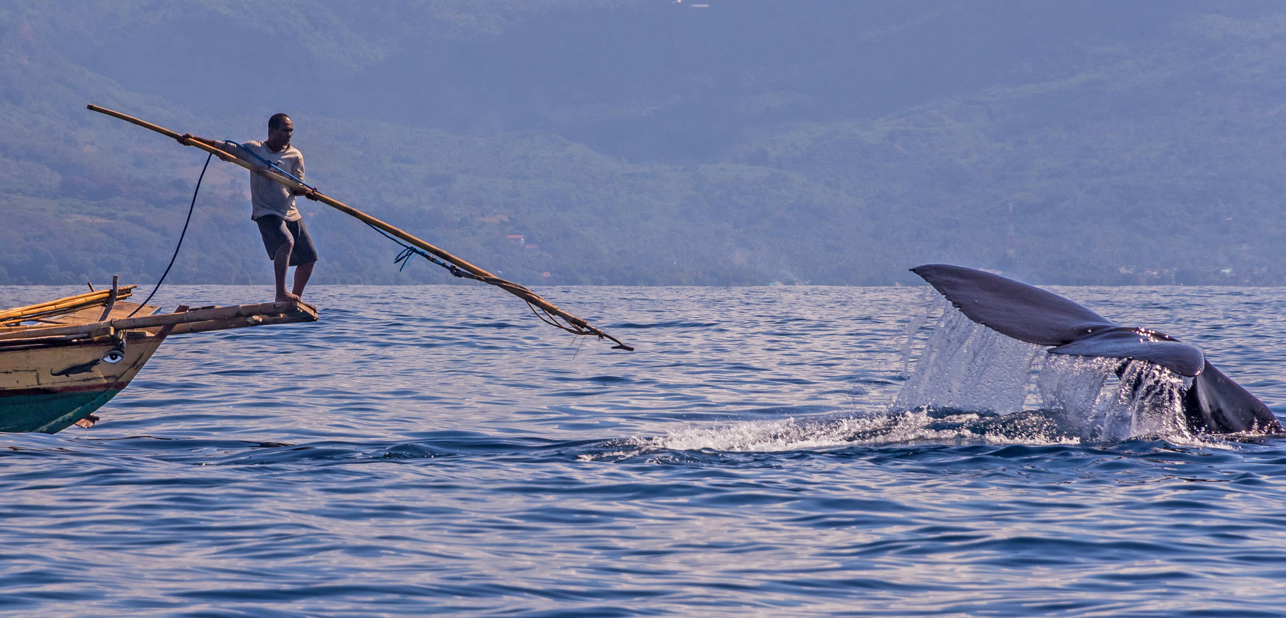 A young Indonesian whale hunter aims at a sperm whale