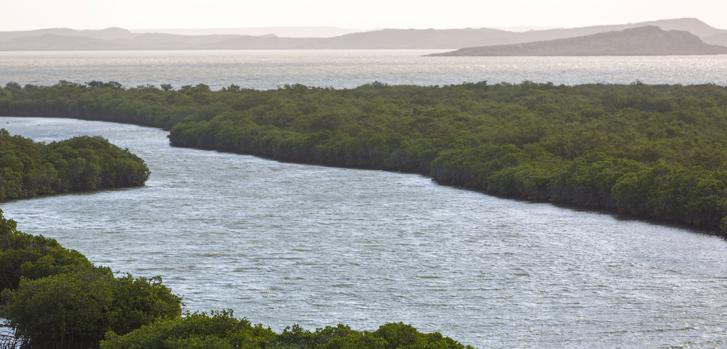 Aerial view of mangroves and coastline near Punta Gallinas in La Guajira, Colombia 2014